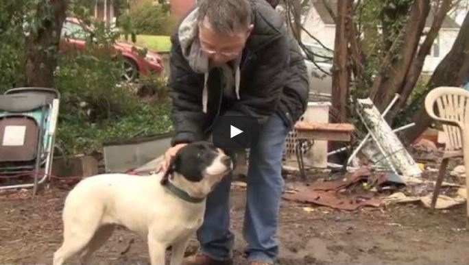 They approach a dog chained up in the rain. Watch her reaction when freed.