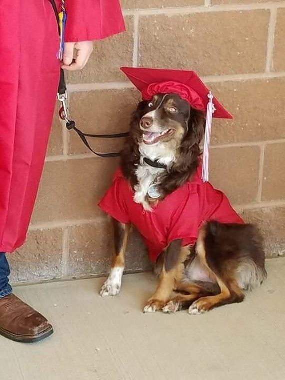 Kid Graduates High School With The Dog Who Saves His Life Every Day