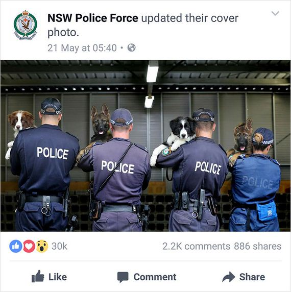 NSW Police Is Winning The Internet With Their Awesome Humor