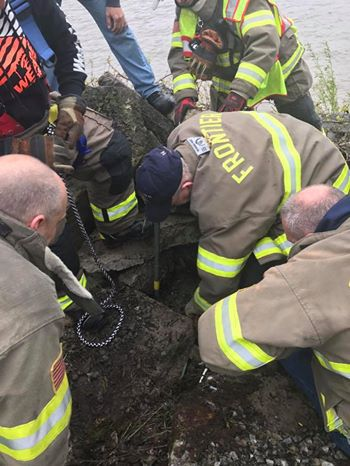 Missing Dog Found Trapped Under Concrete Slabs Near A River After Girls Heard Her Crying For Help
