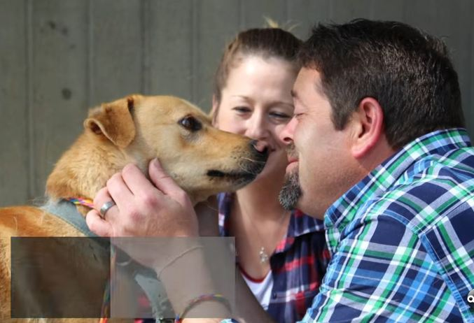 They hadn't seen their dog in 2 years, but when he sees them again for the first time…
