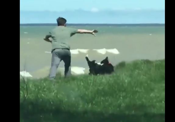 Man's walking his dog near the water, but the dog doesn't notice the cliff