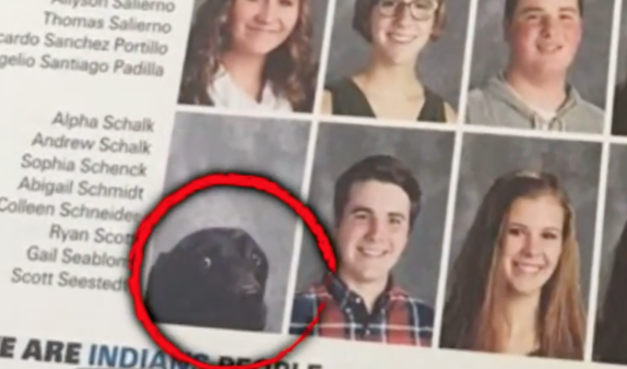 At This Virginia High School, A Service Dog Gets His Photo In The Yearbook Just Like Any Other Kid!