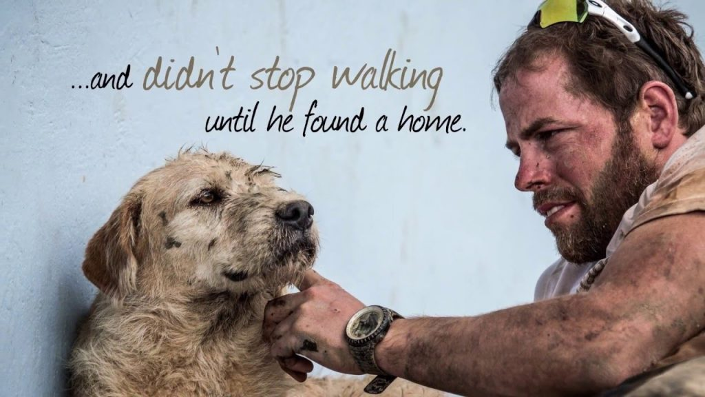 A Dog's Remarkable Journey To Find A Home | SC Featured | ESPN Stories