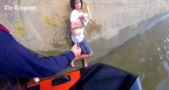 Good Samaritan Jumps into the Thames to Save a Drowning Dog