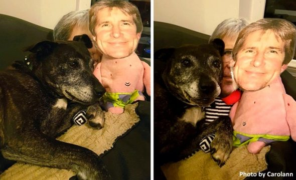 This Dog Who Misses Her Dad Absolutely ADORES the Toys Made With His Face on Them