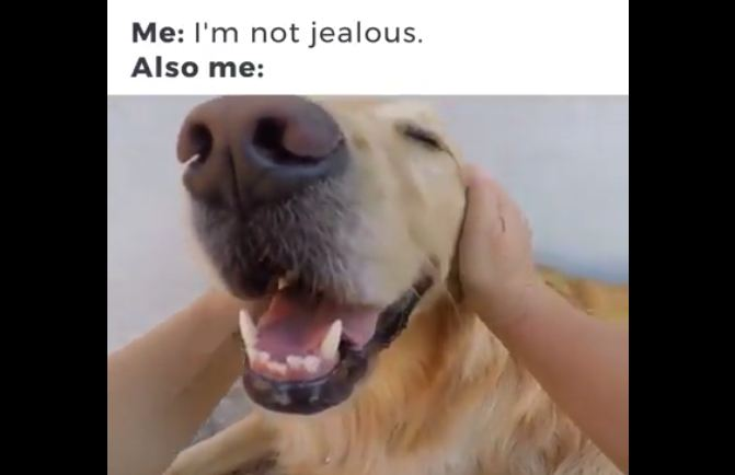 When You're Totally NOT Jealous, but You Totally Are at the Same Time…