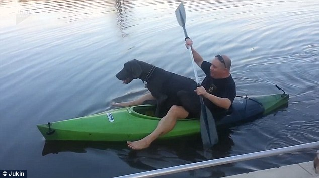 Big Great Dane Goes On Kayak Ride With Dad