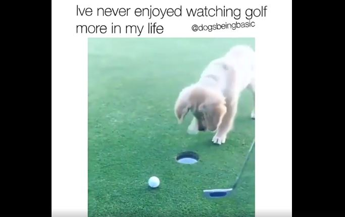 How To Make Golf Interesting