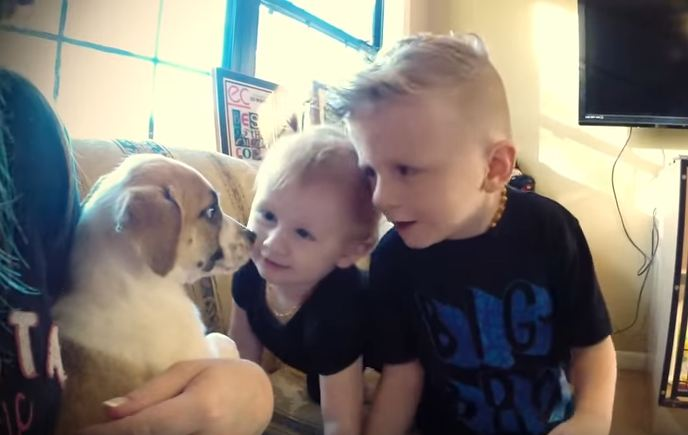 Dad makes adopting a puppy an event the family will never forget