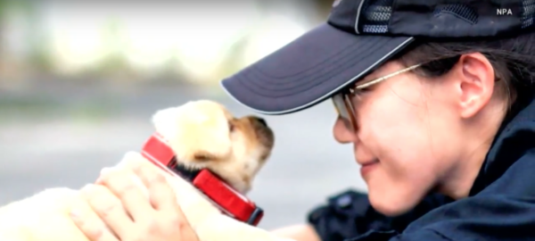 Taiwan Introduces The World To Their Newest K-9 Recruits! These Pups Are Too Cute For Words!