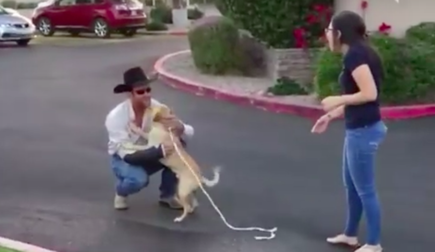 Dog Who Went Missing At A Campground Ecstatically Reunites With His Owner