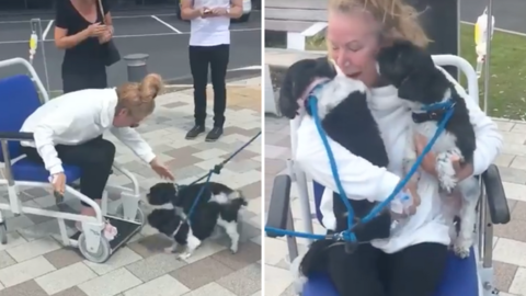 Cancer Patient Tearfully Reunites With Her Beloved Pups After Spending 2 Weeks In The Hospital