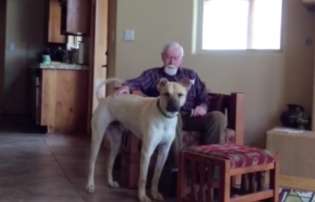 Man With Alzheimer's Comes Alive When He Spends Time With His Daughter's Dog