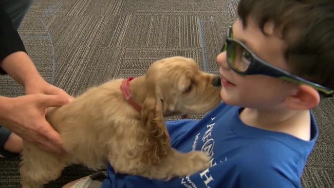 Three-Year-Old Cancer Survivor Has His Wish Granted And Receives An Adorable Puppy