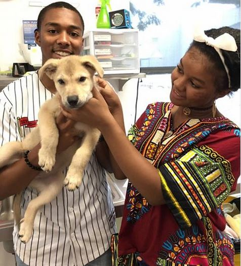 Puppy Rescued From Hot Car Gets Unexpected Happy Ending
