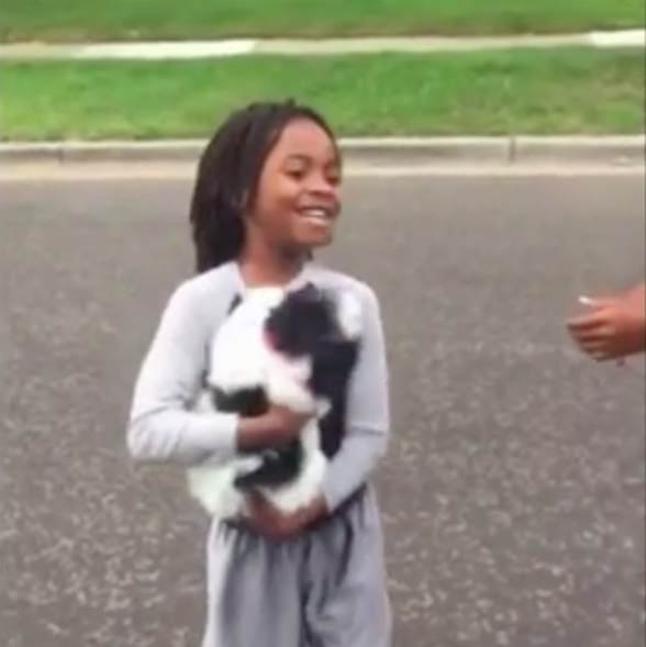 Puppy Stolen From Boy's Arms Is Finally Reunited With Her Family