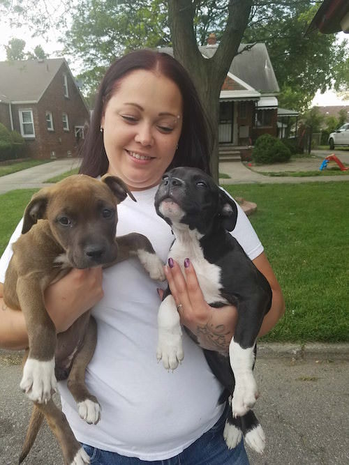Rescue Buys Puppies For Sale On Facebook To Save Them From Dog Fighting
