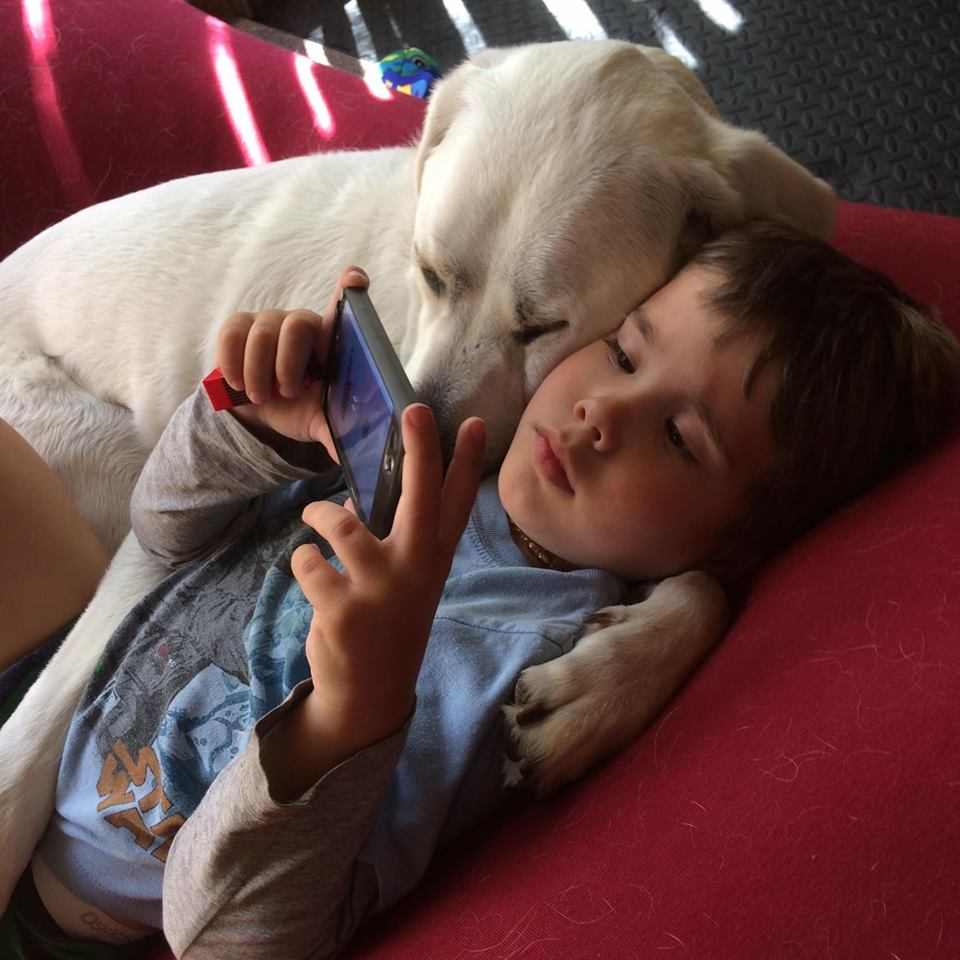Little Boy With Autism Gets A Dog Who Changes His Life For The Better