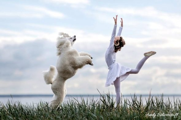 "These Dogs Love ""Ballet"" as Much as Their Human Pas de Deux Partner Does!"
