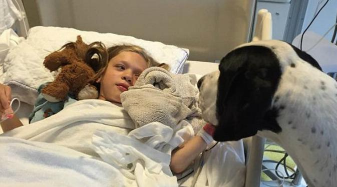 Dog gives his all for little girl, so family decides to return the favor