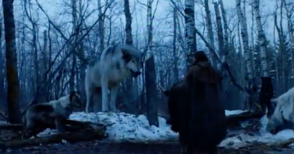 Game Of Thrones Star Peter Dinklage Has An Important Message For Potential Husky Parents