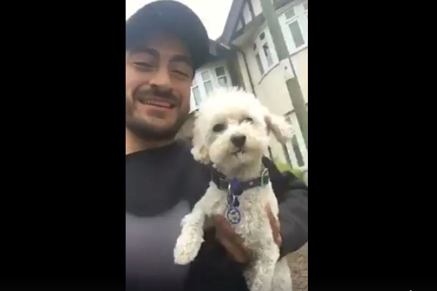 Kind Man Chases After Dog In Traffic When No One Else Would