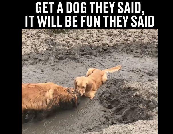 Bathtime: Mud Bath, That Is!