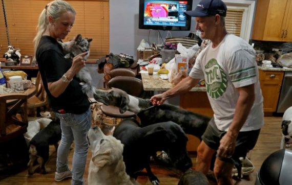 Kind Couple Takes In 46 Pets To Help Families Struggling With Hurricane Irma