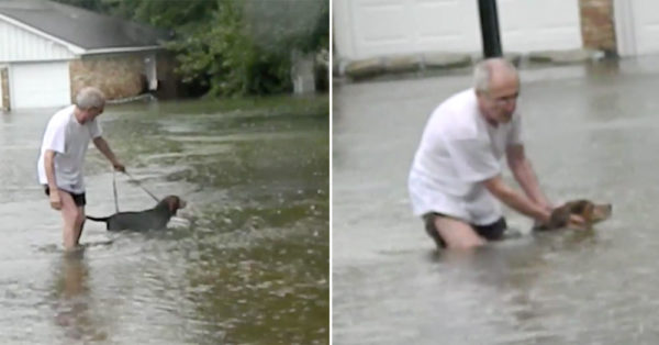 Elderly Houston Man Wades Through Floodwaters After Spotting Stranded Dog
