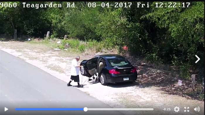 Arrested: Video captures heartless owner abandon dog in southern Dallas