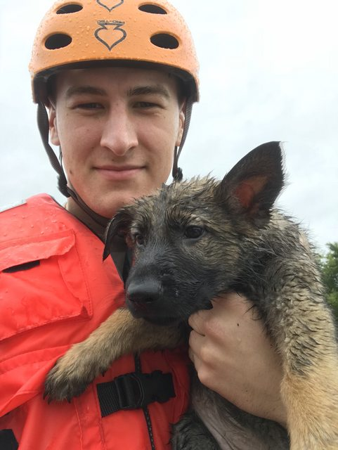 Soldier Shares Photos Of Pets From Flood After He Feels Devastated By The Lives He Couldn't Save
