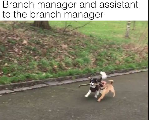 We'd Like To Speak To The Branch Manager, Please