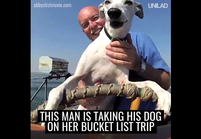 This Man Is Taking His Dog On A Bucket List Road Trip!