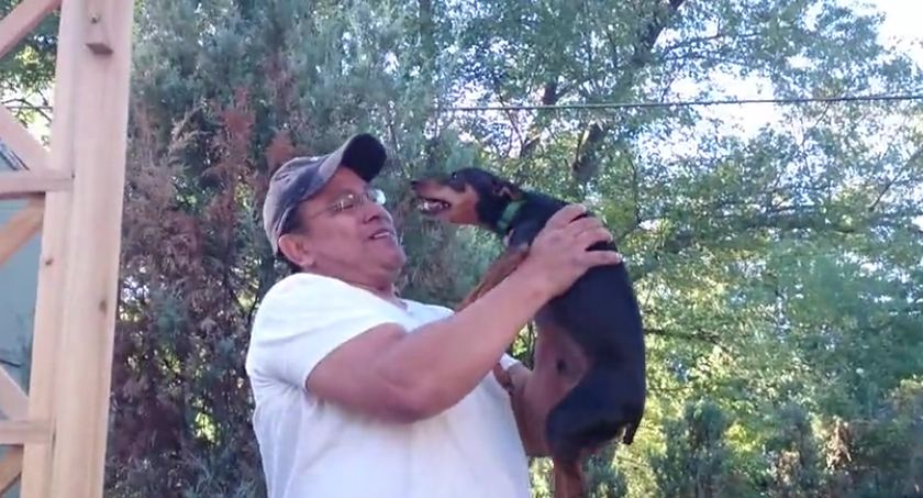 Dog reunites with previous owner after 2 years