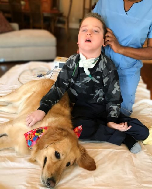 Rescue Dog Becomes The First Friend Of A Boy With Special Needs
