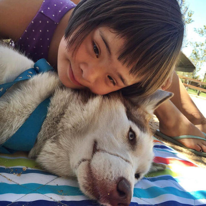 Dog Whose Snout Was Tied Shut With Wire Helps Abused Children Feel Safe While They Testify In Court