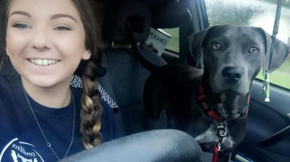 Student Asks Professor About Bringing Dog To Class Before Hurricane, His Answer Is Perfect