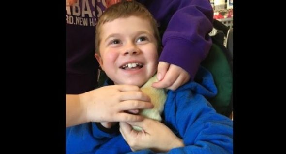 When Liam Met Fenway: How A Special-Needs Child Got The Perfect Service Dog