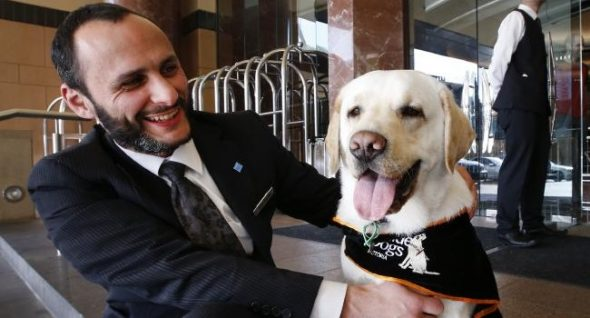 Are Dog Concierges A New Hospitality Trend? We Hope So!