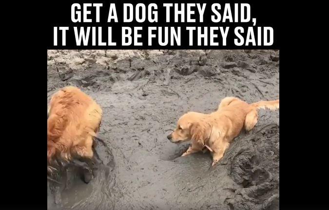 Mud Bath? Don't Mind If I Do!