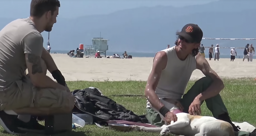Man Offers To Buy Homeless People's Dogs For Social Experiment
