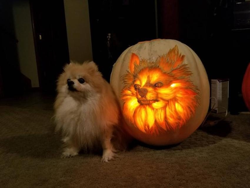 Pumpkin Carving Time-Lapse Of A 'Pompkin' Is Mesmerizing To See