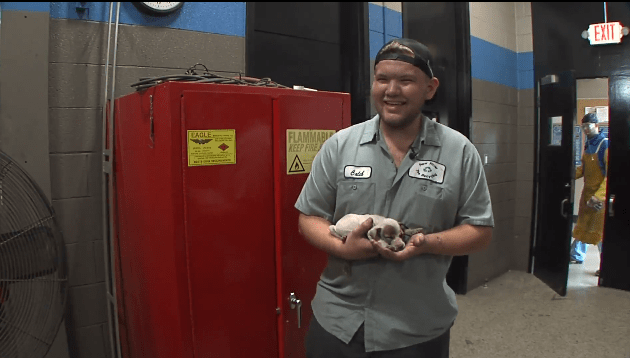 Heroes rescue tiny puppy who was stuck in a car engine