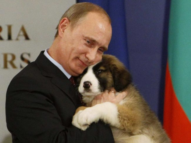 Vladimir Putin kisses and hugs his new puppy given to him as birthday present