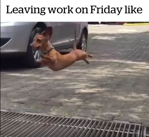 Leaving Work On Friday Like…!