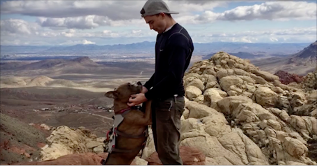 After 6 Months Of No Eye Contact, Dad Figures Out Adopted Dog's True Passion