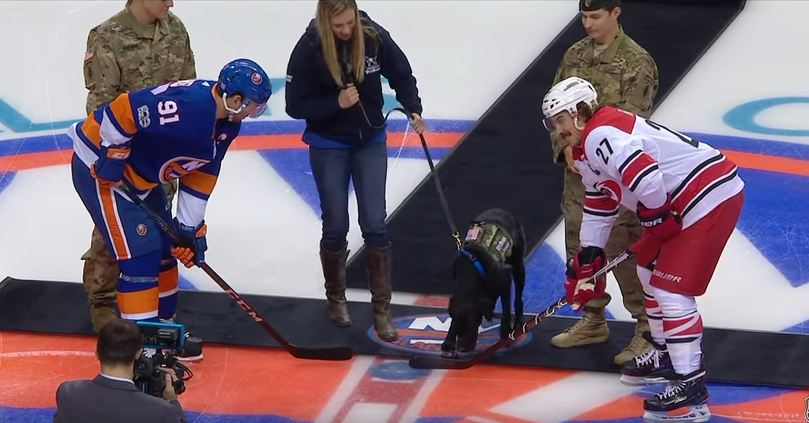 A Super Adorable Lab Dropped The First Puck At Last Night's Islanders Game