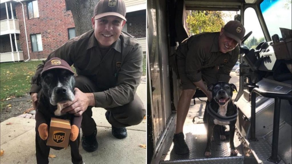 Dog Surprises Her Favorite UPS Driver By Dressing Like Him For Halloween