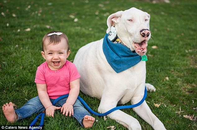Deaf And Blind Dog Was Going To Be Euthanized, But This Family Knew Her True Worth